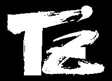 手錢葵子オフィシャルウェブサイト   T'z Aiko Official Web Site
